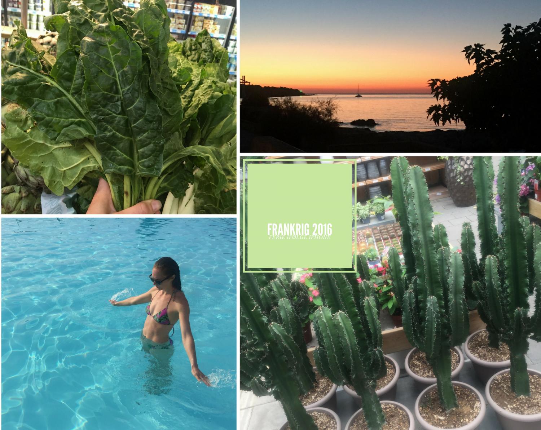 FRANKRIG 2016, ferie ifølge iPhone, Christine Bonde